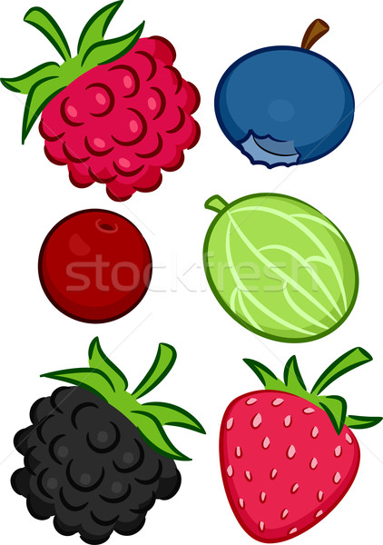 Different Types of Berries Stock photo © lenm
