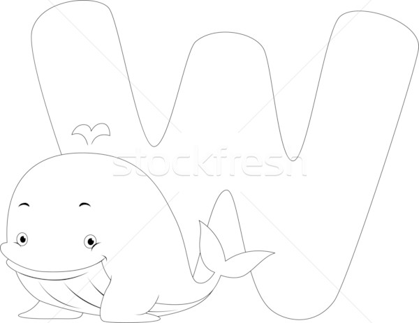 Coloring Page Whale Stock photo © lenm