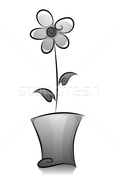 Potted Flower Plant in Black and White Stock photo © lenm