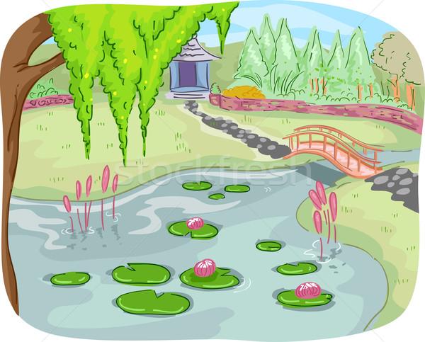 Jardin botanique illustration étang plein Lotus laisse Photo stock © lenm