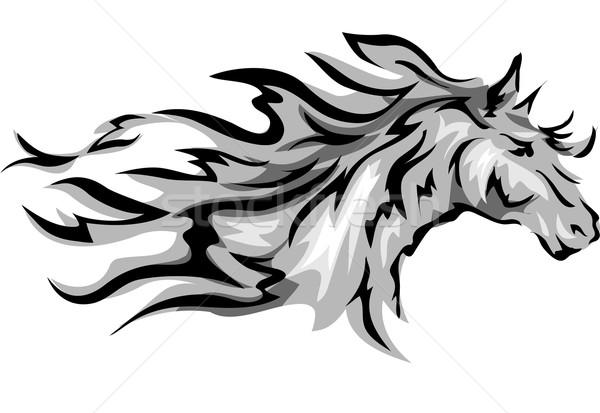 Horse Stock photo © lenm