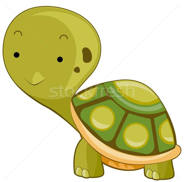 Turtle Stock photo © lenm