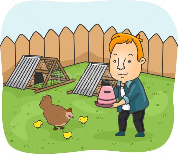 Man Chicken Backyard Stock photo © lenm