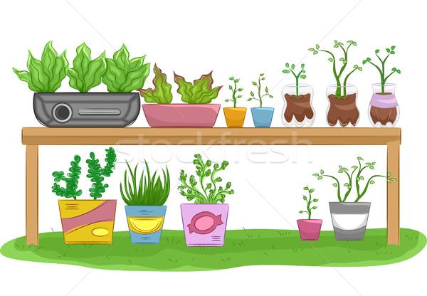 Jardinería mesa reciclado ilustración flor salud Foto stock © lenm