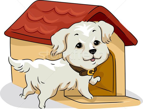 Dog House Stock photo © lenm