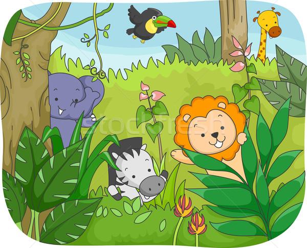 サファリ動物 演奏 実例 ジャングル ライオン 動物 ストックフォト © lenm