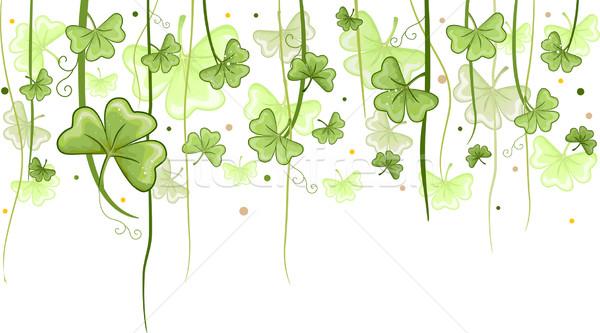 Shamrock vines ilustração enforcamento trevo plantas Foto stock © lenm