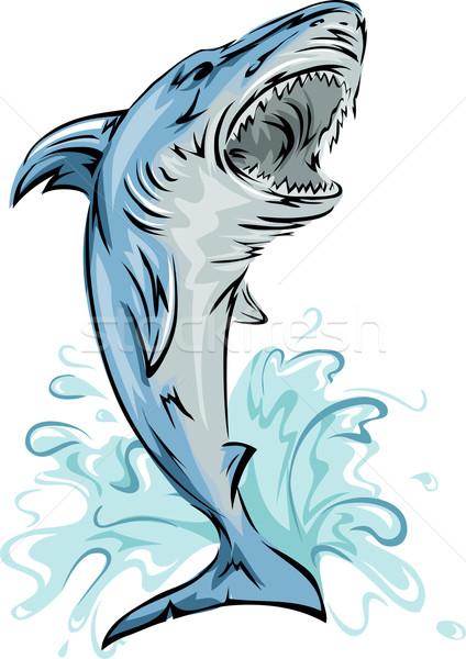 Haai illustratie uit water sport onderwater Stockfoto © lenm