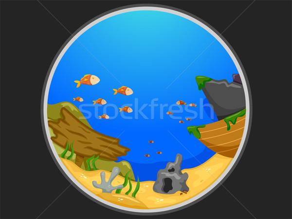 Telescopic View of an Underwater Scene Stock photo © lenm