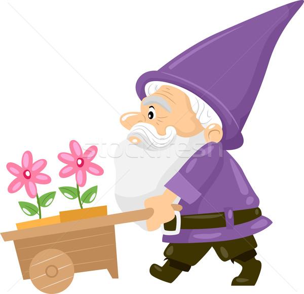 Flor gnomo ilustración empujando carrito Foto stock © lenm