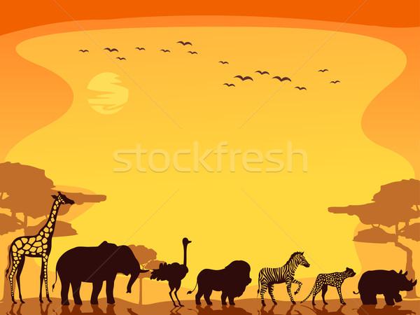 Safari hayvanlar arka plan örnek yürüyüş düz hat Stok fotoğraf © lenm