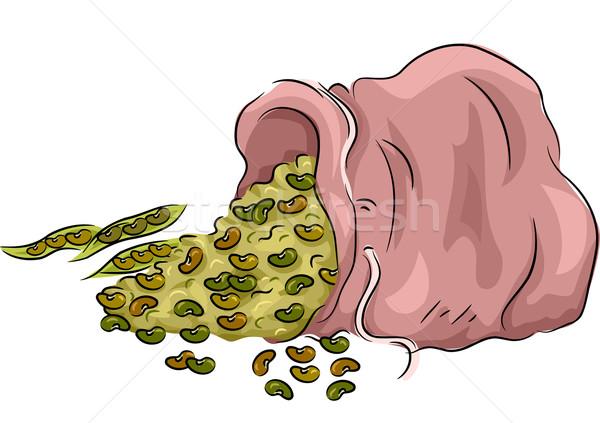 Saco de feijão ilustração feijões vegetal colheita sementes Foto stock © lenm