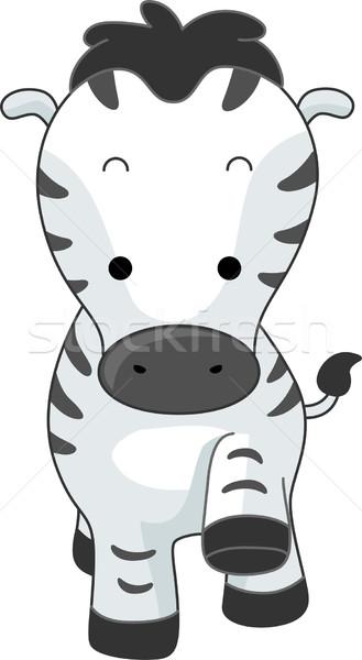 Zèbre illustration marche cartoon vue Safari Photo stock © lenm