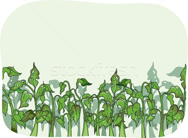 Bicho ilustração plantas verde legumes agricultura Foto stock © lenm