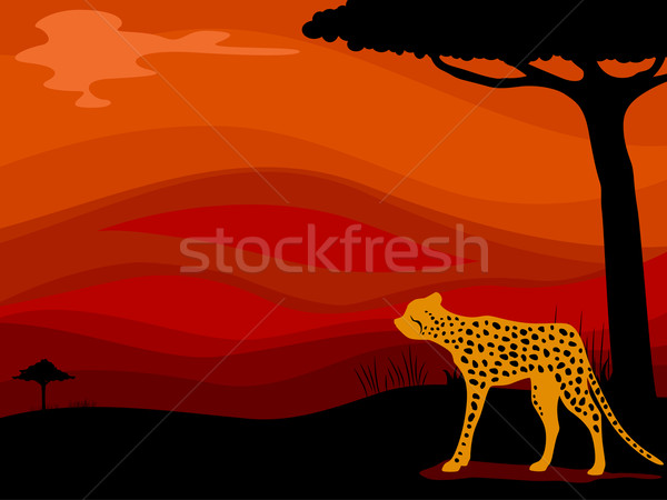 Cheetah Savanna Background Stock photo © lenm