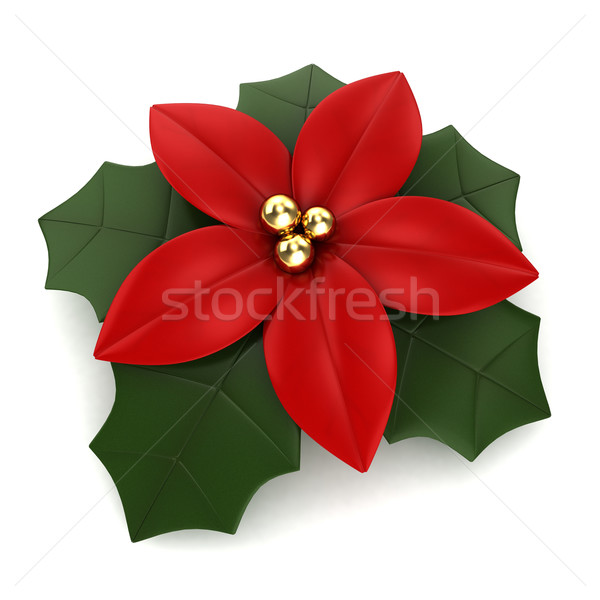 Poinsettia Stock photo © lenm