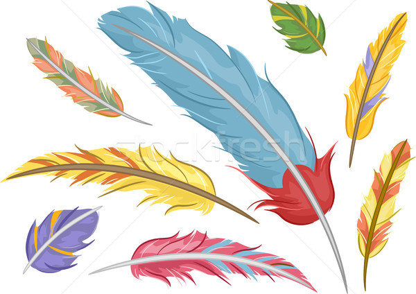 Colorful Feathers  Stock photo © lenm