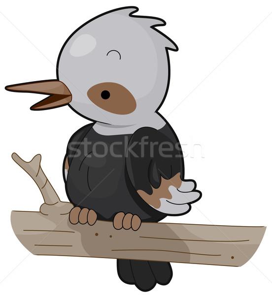 зимородок птица Cute изолированный clipart Сток-фото © lenm
