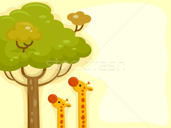 Zsiráf illusztráció zsiráfok elér levelek magas Stock fotó © lenm