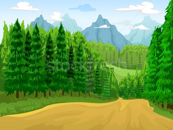 Coniferous Forest Scene Stock photo © lenm