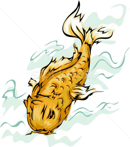Koi vis illustratie gouden kunst dier Stockfoto © lenm