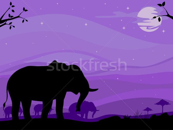 Fil savan arka plan örnek siluet çöl Stok fotoğraf © lenm
