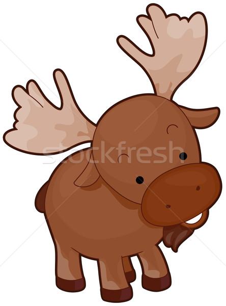 Moose Stock photo © lenm