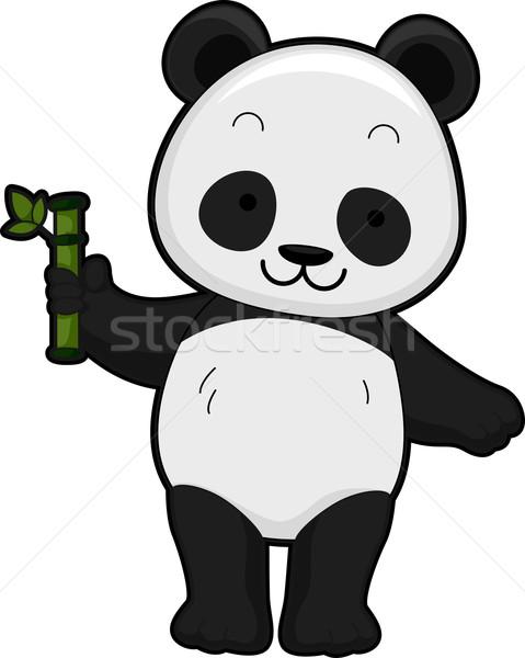 Gigante panda ilustración frente vista Foto stock © lenm