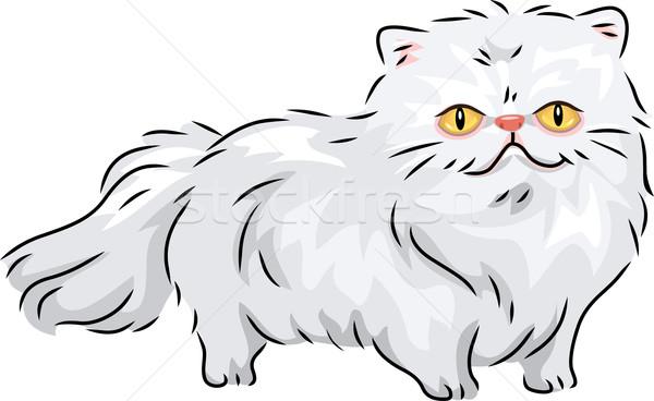 Persian Cat Stock photo © lenm