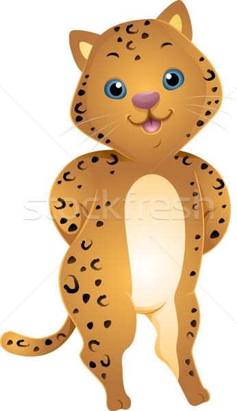 Sevimli jaguar örnek pençeleri arkasında geri Stok fotoğraf © lenm