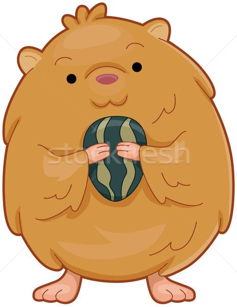 Hamster örnek sevimli tohum karikatür Stok fotoğraf © lenm