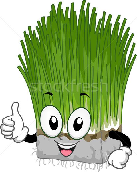 Mascot Wheat Grass Stock photo © lenm