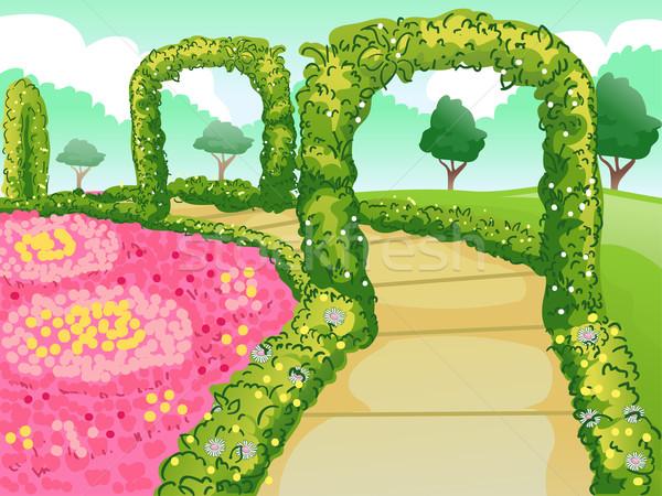 Giardino botanico percorso illustrazione fiori panorama giardino Foto d'archivio © lenm