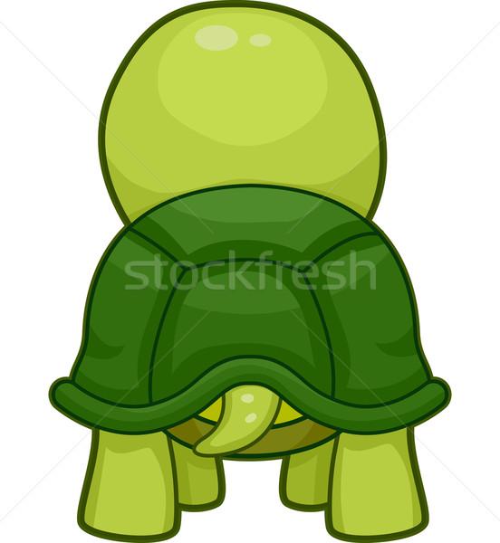 черепахи назад иллюстрация мнение Cute изолированный Сток-фото © lenm