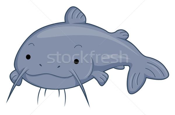 Cute Catfish Stock photo © lenm