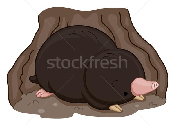 Cute моль Cartoon иллюстрация млекопитающее Сток-фото © lenm