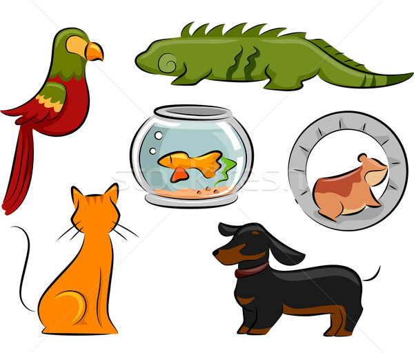 Pet Design Elements Stock photo © lenm