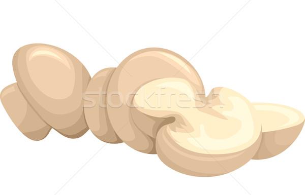Pulsante funghi illustrazione gruppo intatto riposo Foto d'archivio © lenm