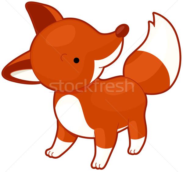Fox Stock photo © lenm