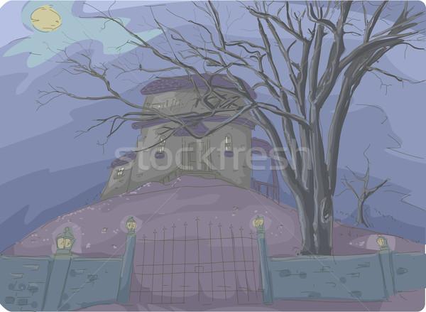 Kisértetjárta ház illusztráció hátborzongató fedett köd Stock fotó © lenm