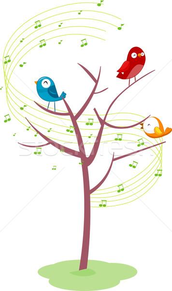 Singing Birds on a Tree Stock photo © lenm