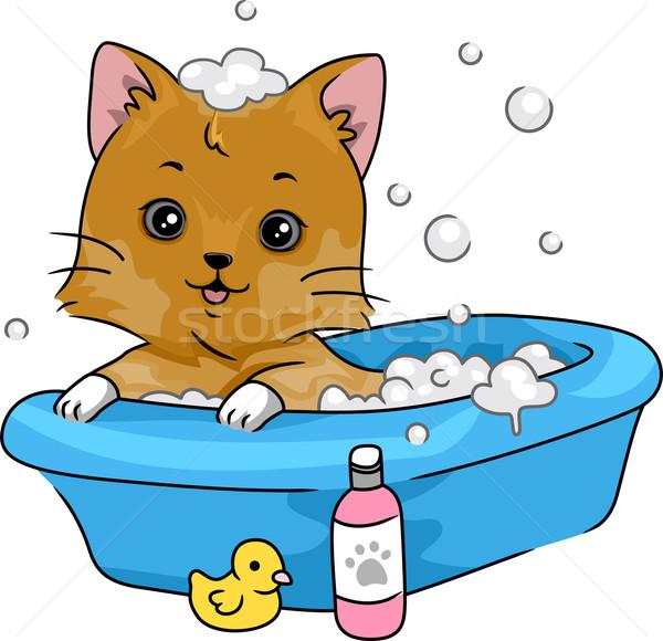 Cat Bath Stock photo © lenm