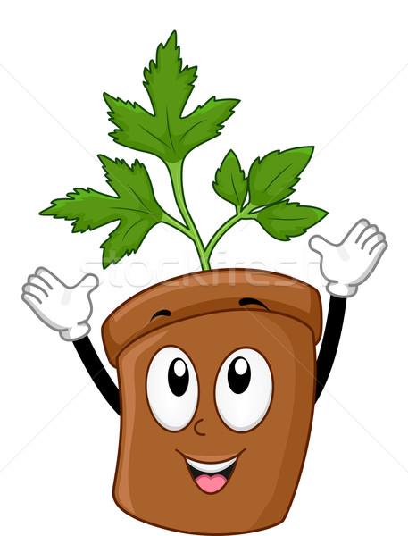 Maydanoz maskot örnek sağlık yeşil bitki Stok fotoğraf © lenm