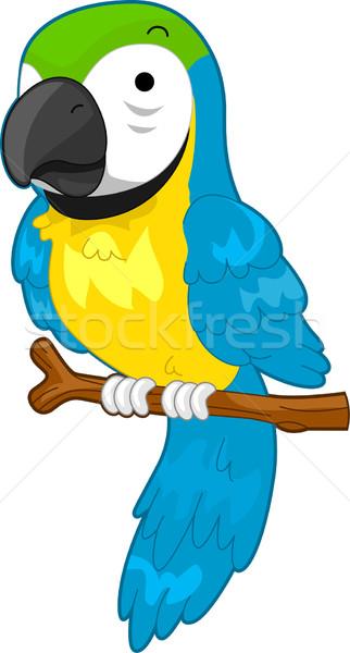 Papegaai illustratie cartoon tak vergadering huisdier Stockfoto © lenm