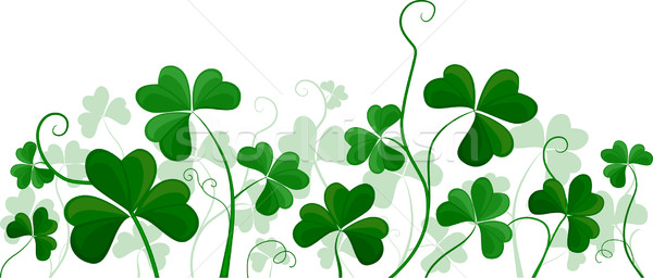 Shamrock Background Stock photo © lenm