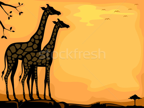 Giraffe Savanna Background Stock photo © lenm