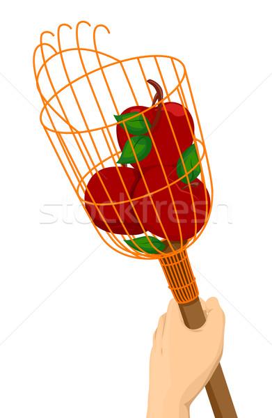 Hand Fruit Picker Stock photo © lenm