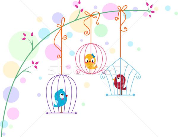 Illusztráció különböző madarak állatok szőlő románc Stock fotó © lenm
