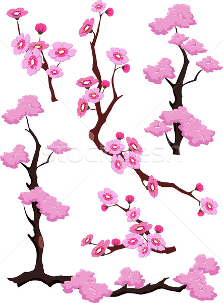 Cherry Blossoms Borders Dividers Stock photo © lenm
