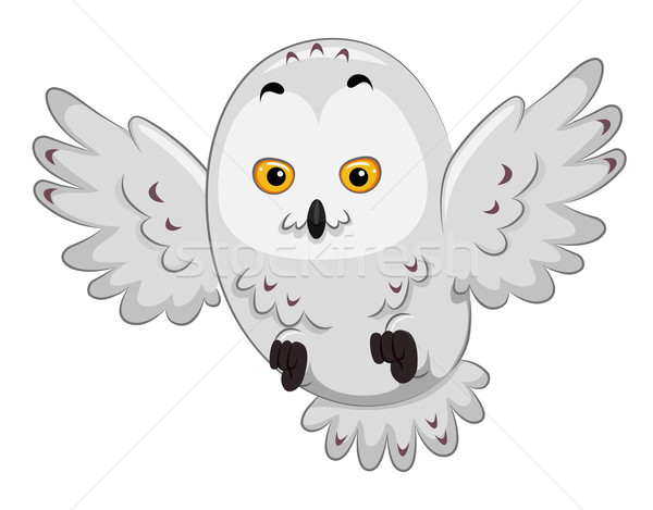 Snowy Owl Stock photo © lenm